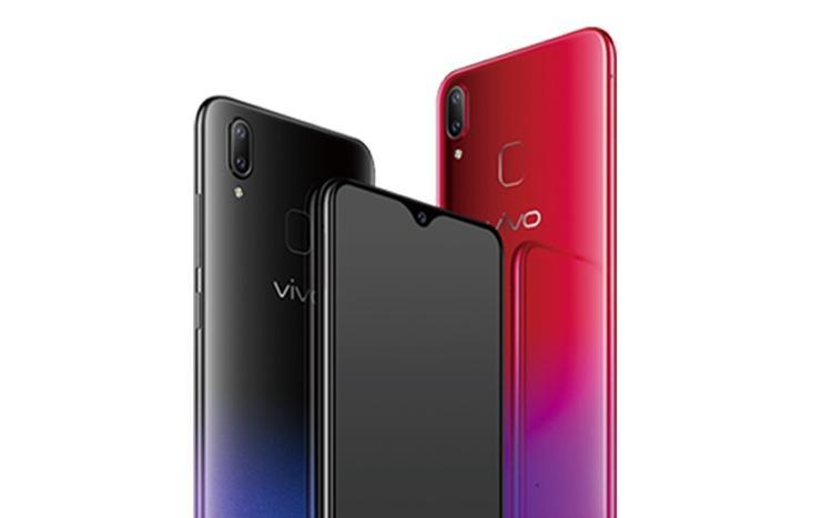 viv1 1